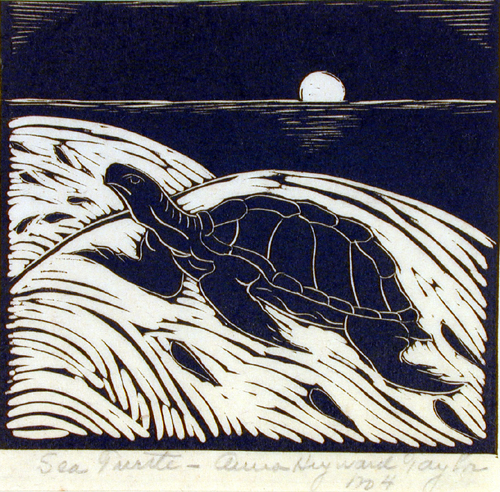 Sea Turtle from the series This Our Land, 1948, by Anna Heyward Taylor (American, 1879–1956). Gibbes Museum of Art (1949.002.0003.002)