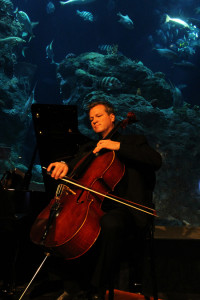 CMC cellist Timothy O'Malley (playing at the SC Aquarium)Photo courtesy of  BT Hunter Photography