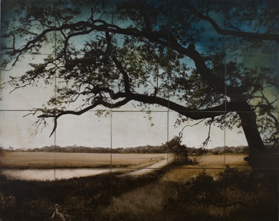 Botany Bay Plantation Boardwalk, 2009, by John Folsom, archival pigment on board with oil and wax