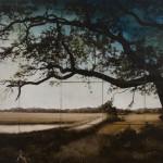 Botany Bay Plantation Boardwalk, 2009, by John Folsom (American, b. 1967)