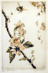 Crabapple Blossoms, ca. 1920s By Antoinette Guerard Rhett