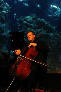 CMC cellist Timothy O'Malley
