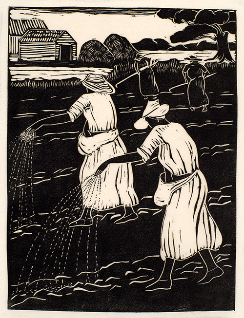 Sowing Rice by Anna Heyward Taylor