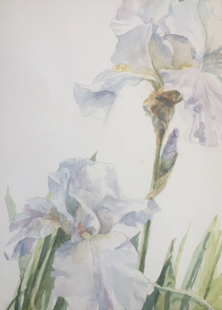 a watercolor demo of flowers by Peggy Ellis
