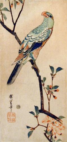 Green Parrot on Crab Apple Branch, ca. 1835, by Ichiryusai Hiroshige