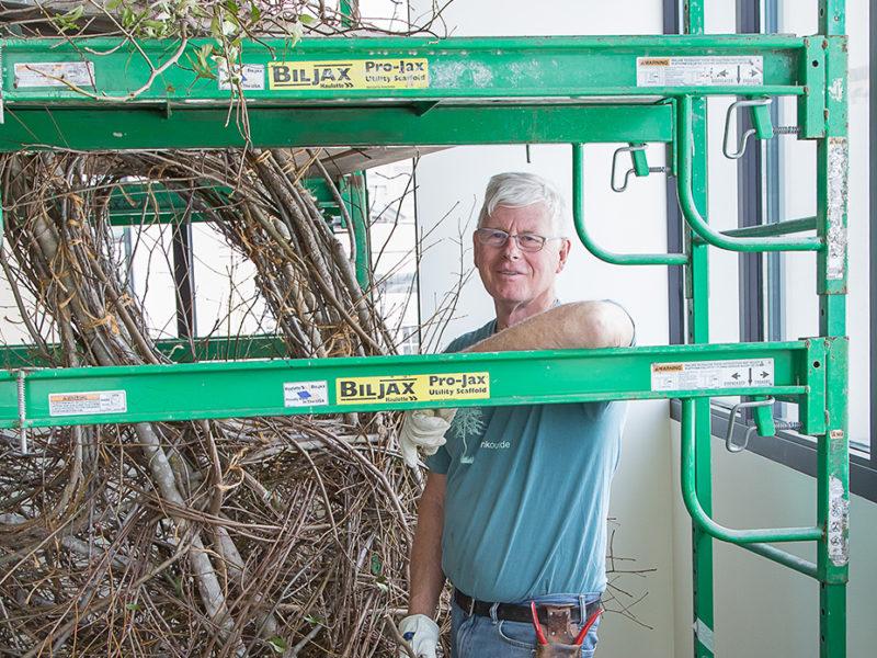 Patrick Dougherty installs sticks in the Gibbes Museum atrium.