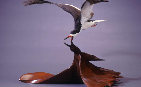 Black Skimmer, 1983 By Grainger McKoy