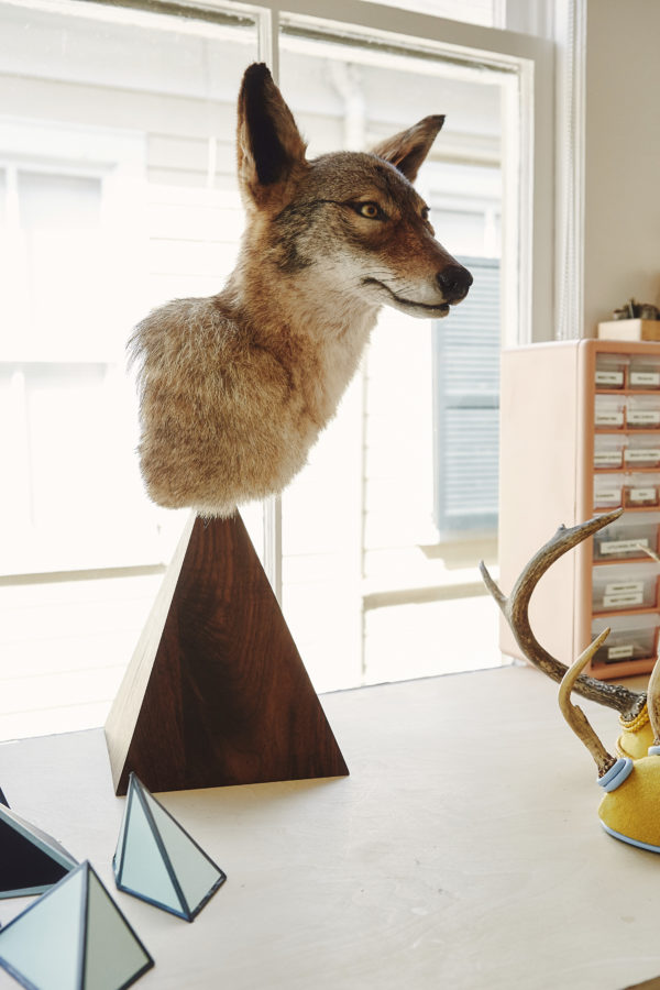 Coyote Bust, by Becca Barnet. Photo by Landon Neil Philips.