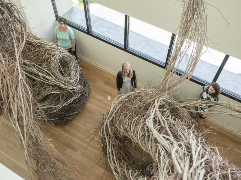 Becca, along with Curator of Exhibitions Pam Wall and Director of Programs & Digital Engagement Lasley Steever, explores her favorite piece currently on view, Betwixt & Between by Patrick Dougherty.