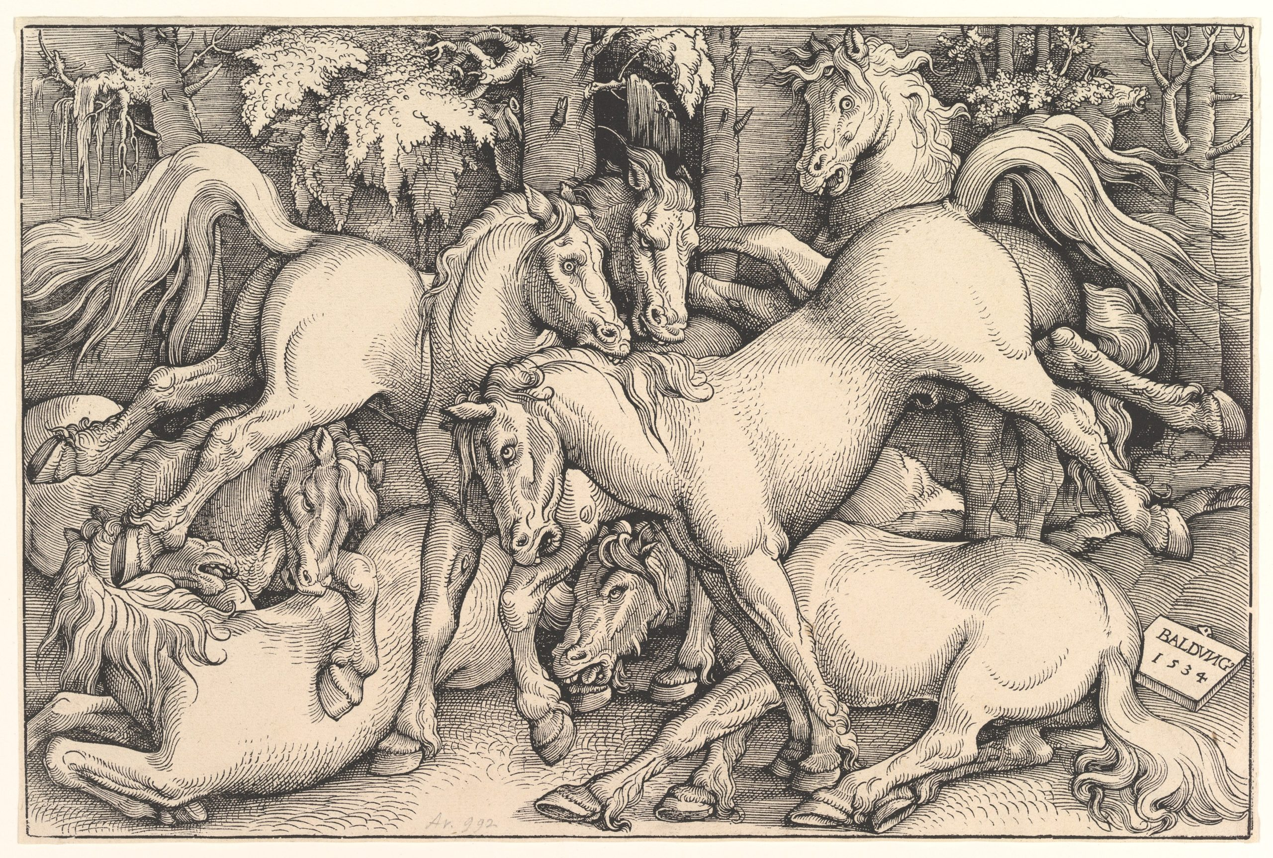 Wild Horses in the Forest, 1534; By Hans Baldung Grien