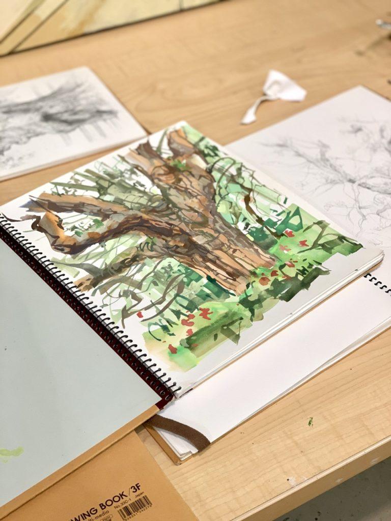 Sketchbook with oak tree