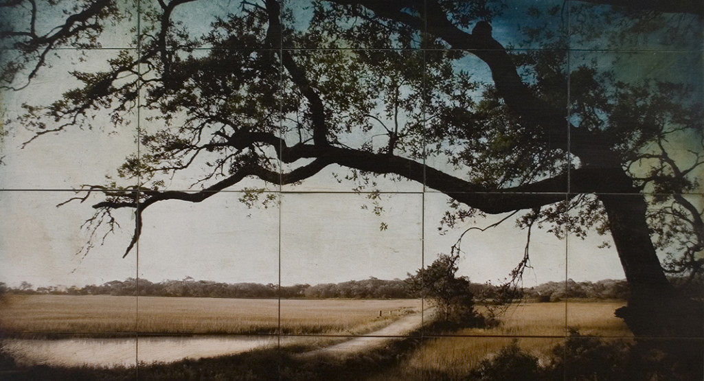 <i>Botany Bay Plantation Boardwalk</i>, 2009, by John Folsom (American, b. 1967); archival pigment print on board with oil and wax; Gift of Retta Ruth Rein, 2010.004