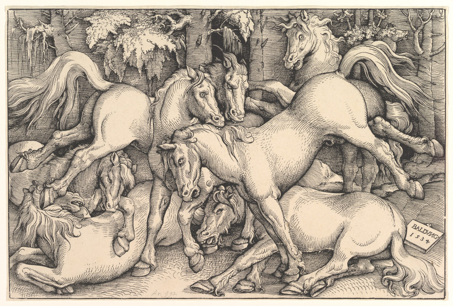 Wild Horses in the Forest, 1534; By Hans Baldung Grien (German, 1475-1545); Woodcut, 8 5/8 x 12 7/8; Courtesy of a private collection