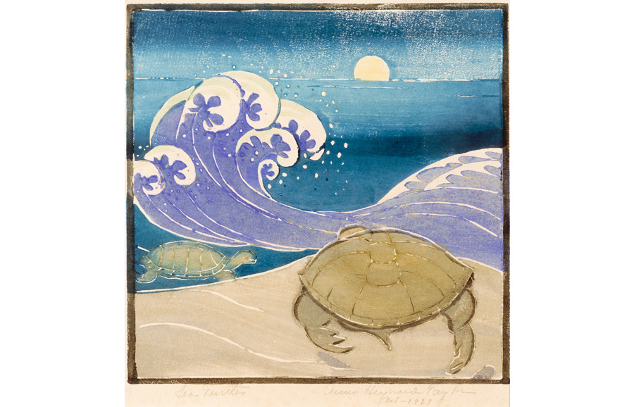<i>Sea Turtle</i>, 1929, by Anna Heyward Taylor (American, 1879-1956); woodblock print on paper; 10 x 11 inches; Gift of Mrs. George Hewitt Myers; 1958.004.0002
