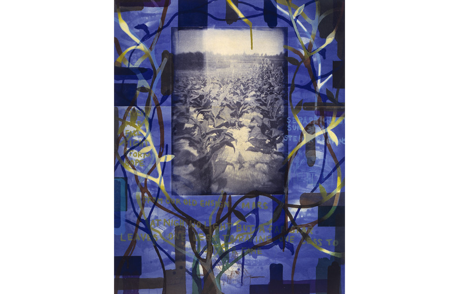 <i>Tobacco Blues</i>, 2000, by Radcliffe Bailey (American, b. 1968); color aquatint etching with photogravure and chine-colle on paper; 42 x 33 inches; Museum purchase; 2001.017
