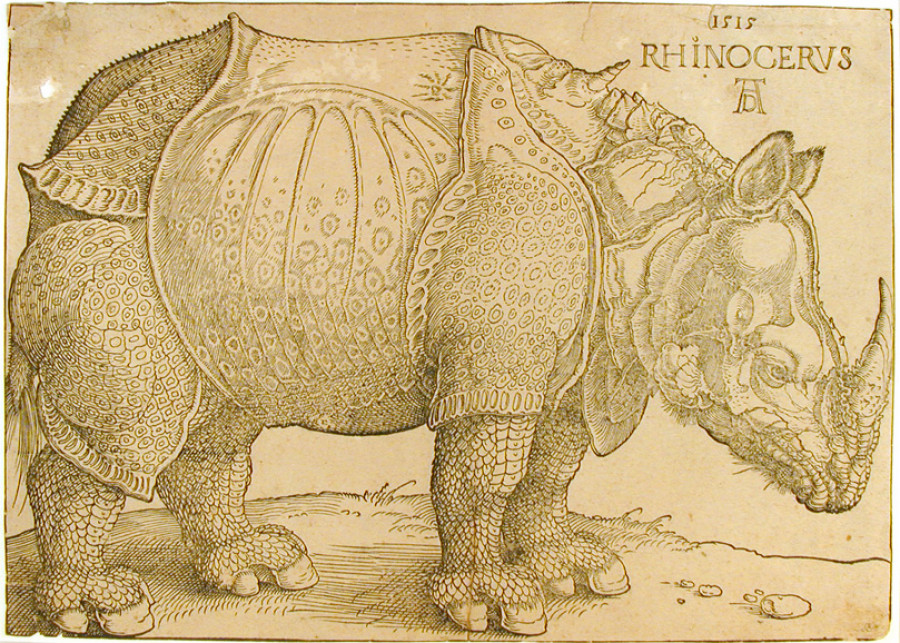 <i>Rhinoceros</i>, 1515, By Albrecht Dürer (German, 1471—1528); Wood engraving on paper; 8 1/2  x 11 3/4 inches; Gift of Wilfred W. Ballard; 1966.005.0015