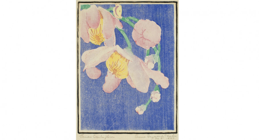 <i>Grias Cauliflora</i>, 1924, By Anna Heyward Taylor (American, 1879—1956); Color woodblock print on paper; 10 7/8 x 7 1/2 inches; Gift of the Artist; 1953.007.0031