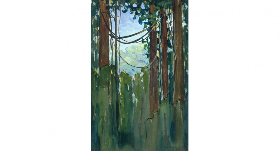 <i>untitled (Guiana Jungle)</i>, 1921, By Anna Heyward Taylor (American, 1879—1956); Watercolor and gouache on paper; 22 3/4 x 14 3/4 inches; Gift of Anna Heyward Taylor; 1946.007.0008